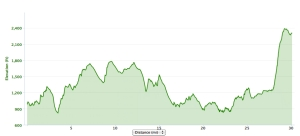 Elevation chart for the race