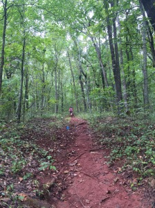 "But for every section of ""flat"" trail there were long steady climbs like this one."