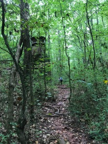 Ruffner Mountain is all kinds of beauty for trail runners.